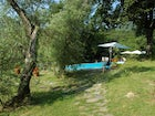 A delicious pool area nestled amoung the olive trees