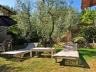 pool  Cesani Farm