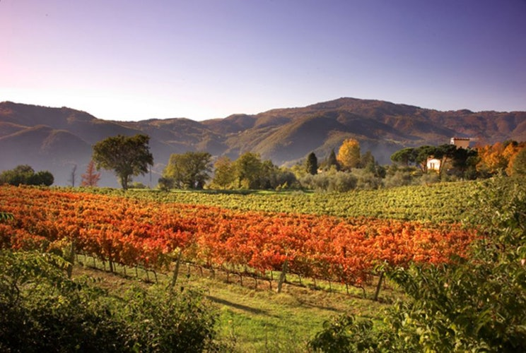 Le valli che circondano la fattoria