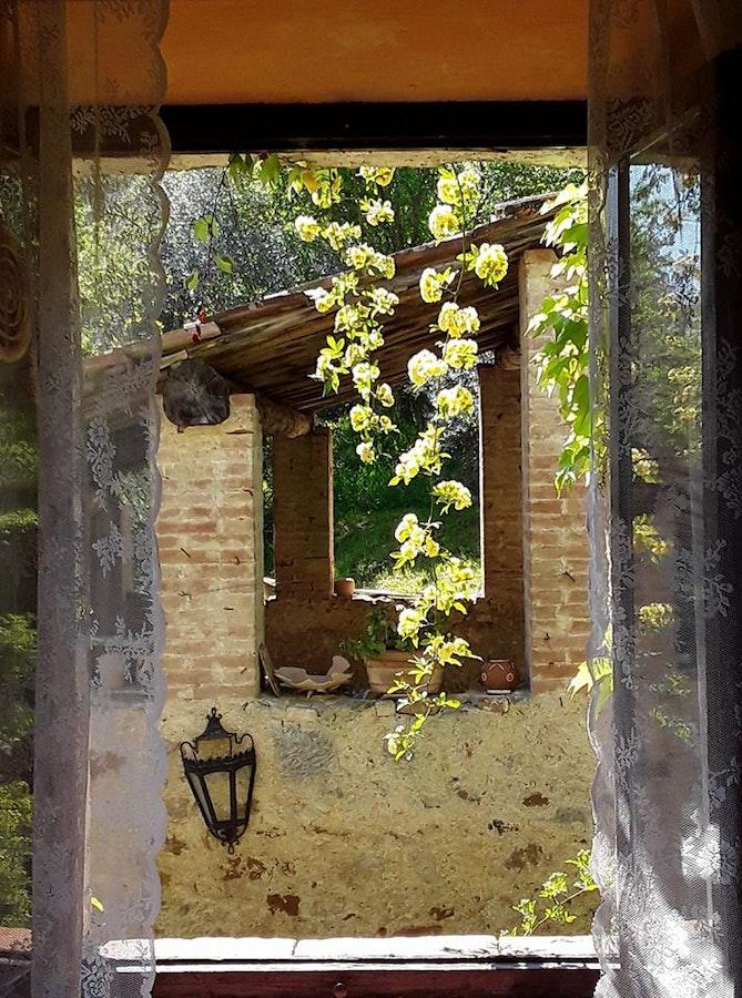 Agriturismo il colombaio di barbara vicino siena agriturismo con ristorante e piscina torri rosia - Ristorante la finestra siena ...