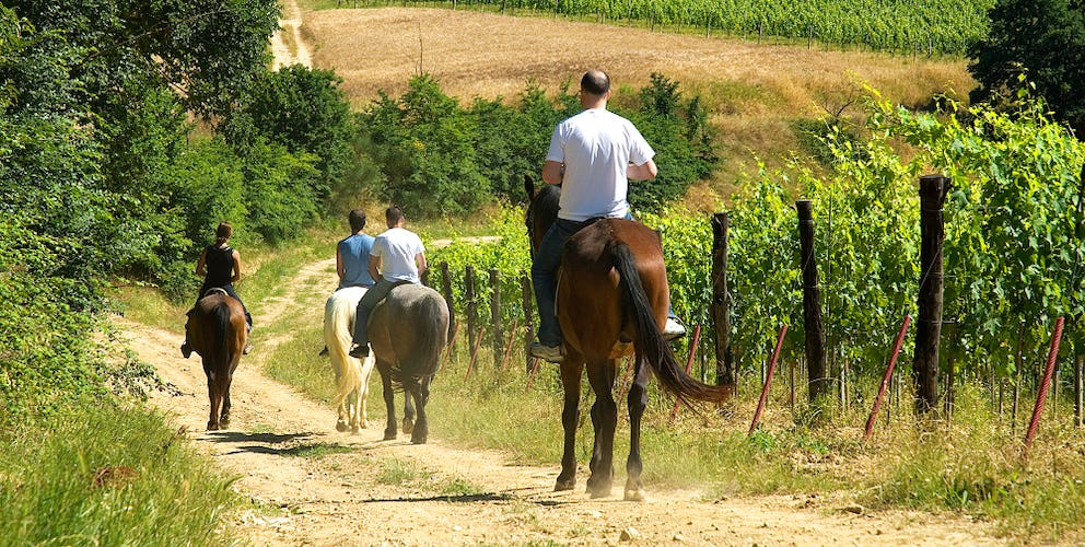 Horseback riding tour for discovering the surroundings