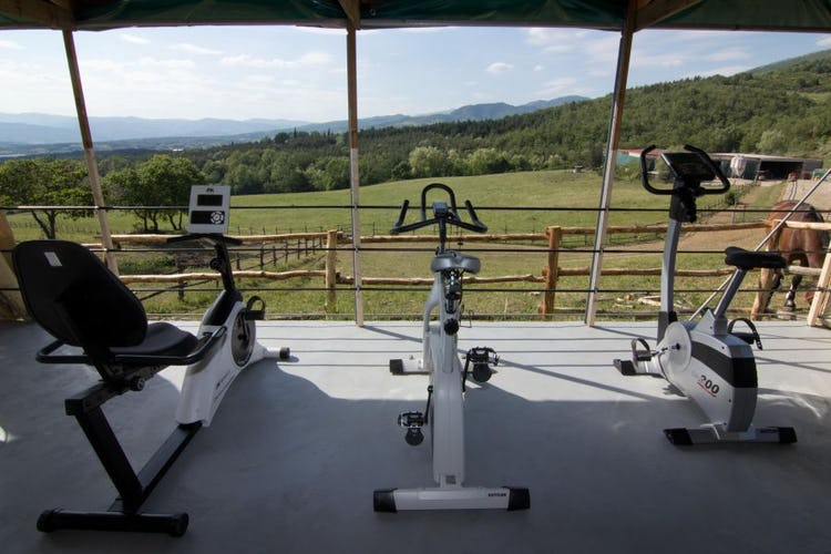 Fitness area Farmhouse La Collina delle Stelle