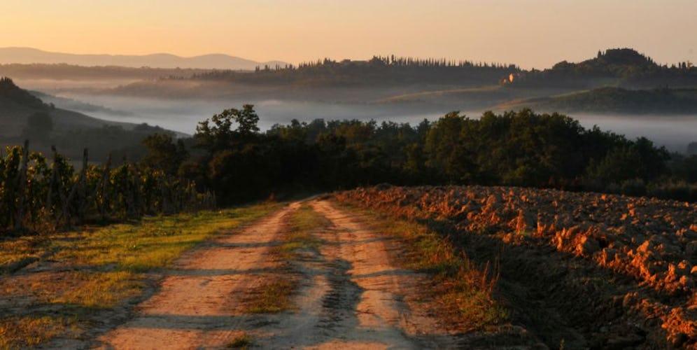 Paesaggio  Lucciolaia Agriturismo