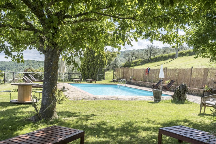 Agriturismo La Sala: Pool with lots of sunlight and natural shade