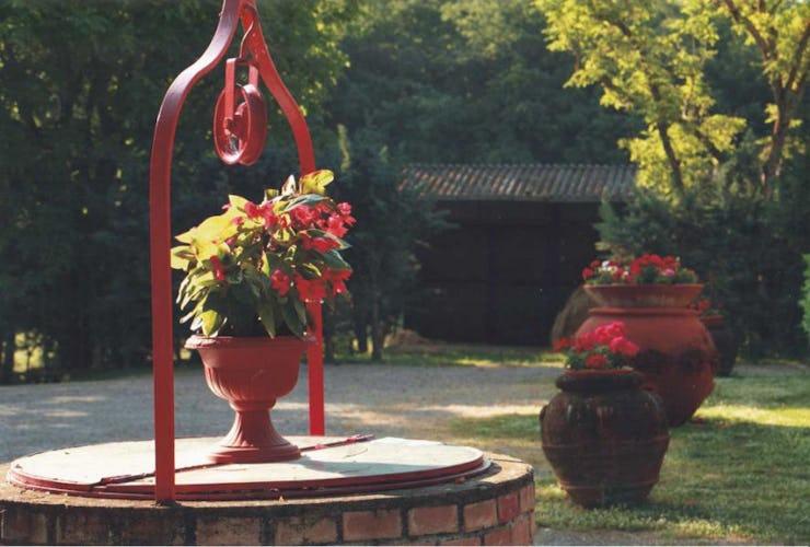 Un particolare del giardino