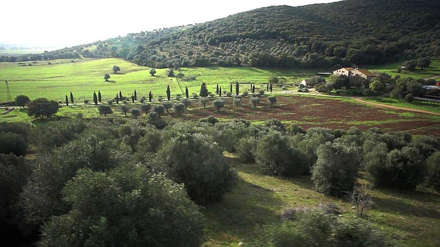 Agriturismo La Valentina in the Parco della Maremma
