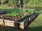 Agriturismo Piettorri - L'orto dove vengono coltivati gli ortaggi freschi