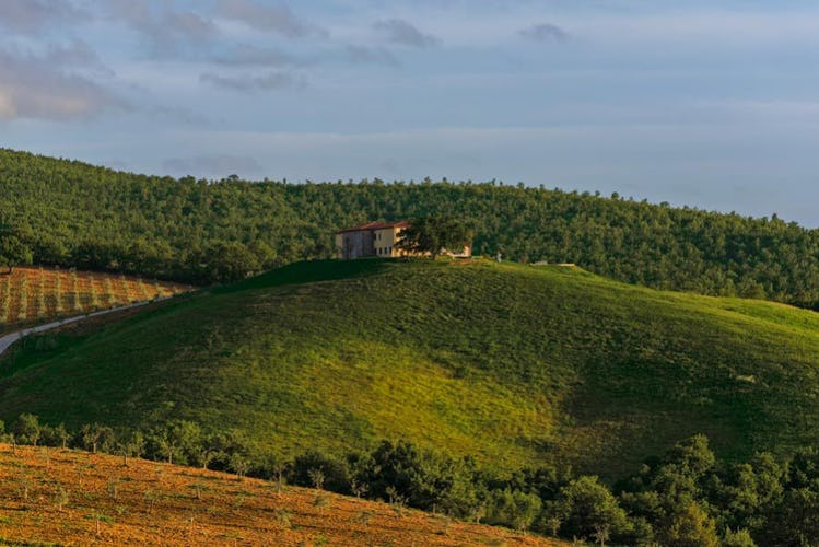Agriturismo Poggio Mirabile near Grosseto boasts an excellent panorama