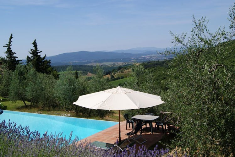 The pool and the surrounding landscape