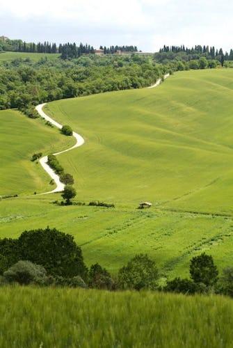 Agriturismo San Fabiano, circondato dall'iconico paesaggio rurale che caratterizza i dintorni di Siena