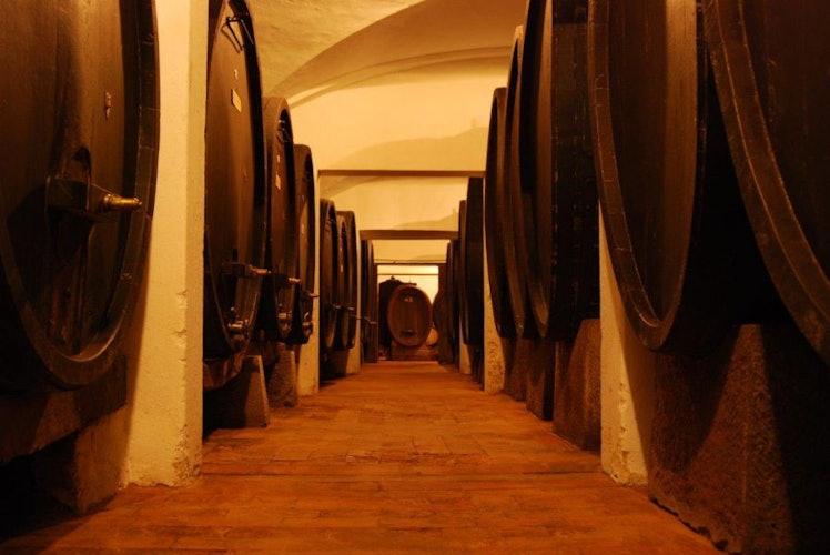 Le antiche cantine dove tuttora viene prodotto il vino dell'azienda