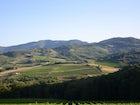 Beautiful views from every corner of Tenuta Bossi