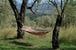Every corner hides a special view at Ancora del Chianti