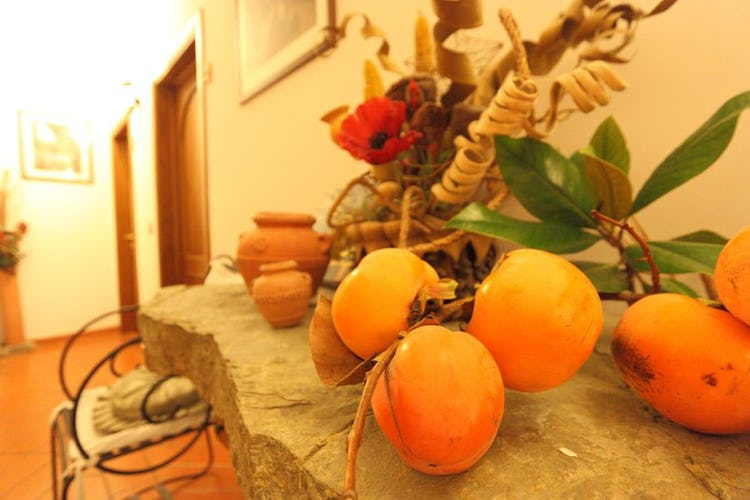 hall-particolare-bed-and-breakfast-firenze