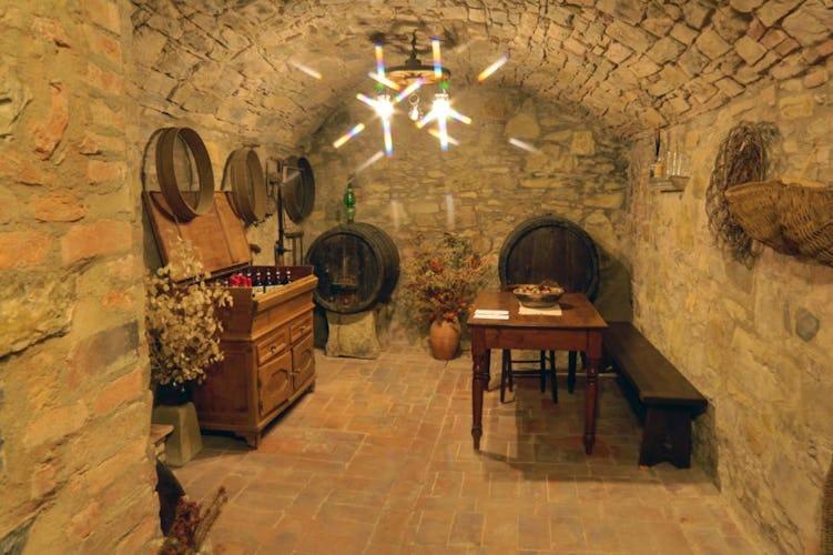 B&B del Giglio: La cantina, dove vengono conservati i vini pregiati del Chianti
