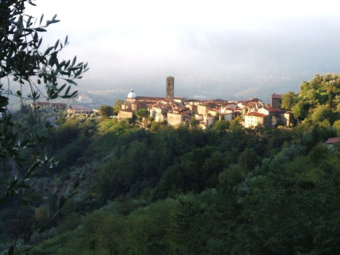 View over the medieval village of Massa e Cozzile