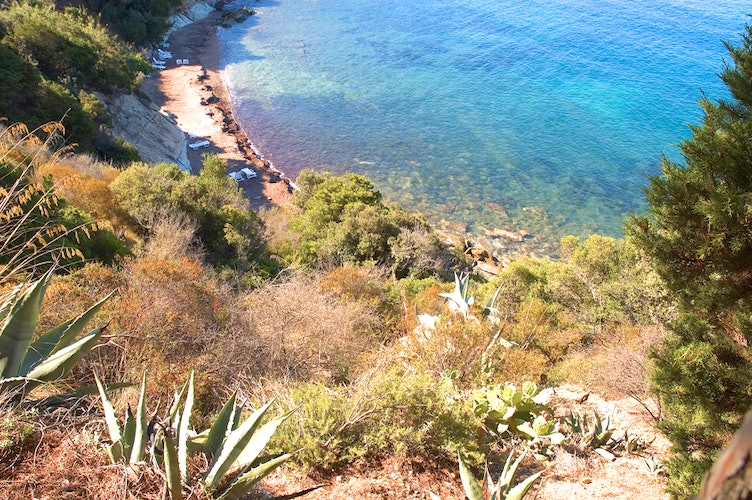 Behind the small beach, the wild nature of Maremma