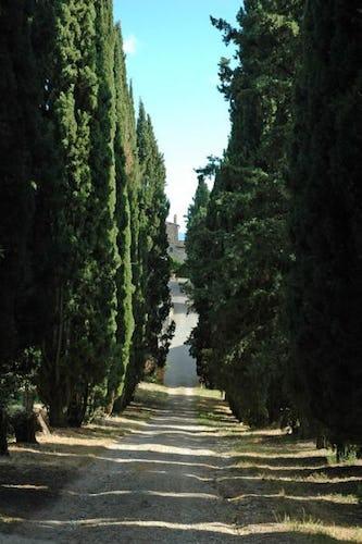 Arrivare alla Fattoria di Catignano nel Chianti