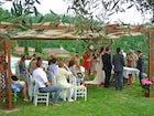 Wedding at the farmhouse