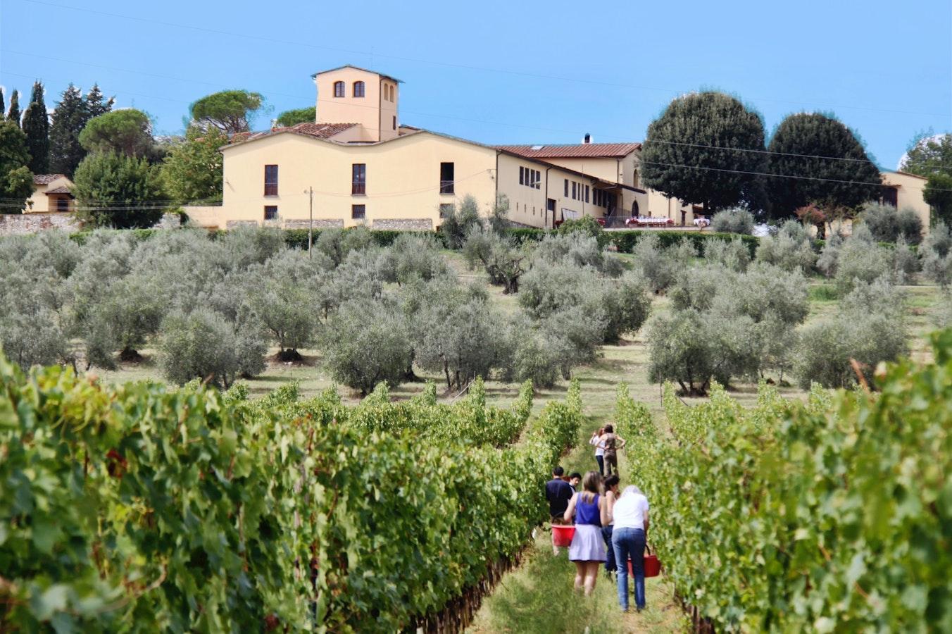 Fattoria pagnana appartamenti in azienda vinicola sui for Planimetrie storiche della fattoria