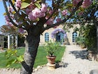 Colorful blossoms in this one of a kind villa garden near Siena