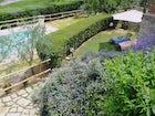La piscina immersa nei fiori e nelle erbe