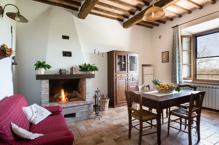 Fully equipped kitchens and cosy fireplace at I Pianelli