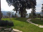 Private garden for relax and tranquility while on holiday in Tuscany