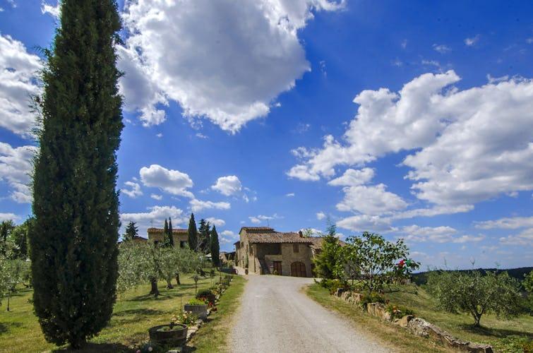 La Rocca di Cispiano: viale alberato di cipressi