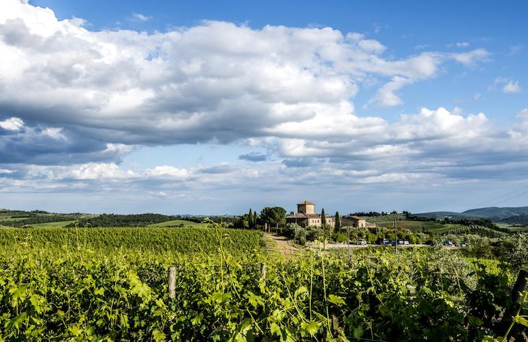 Locanda Le Piazze: between Chianti and Siena