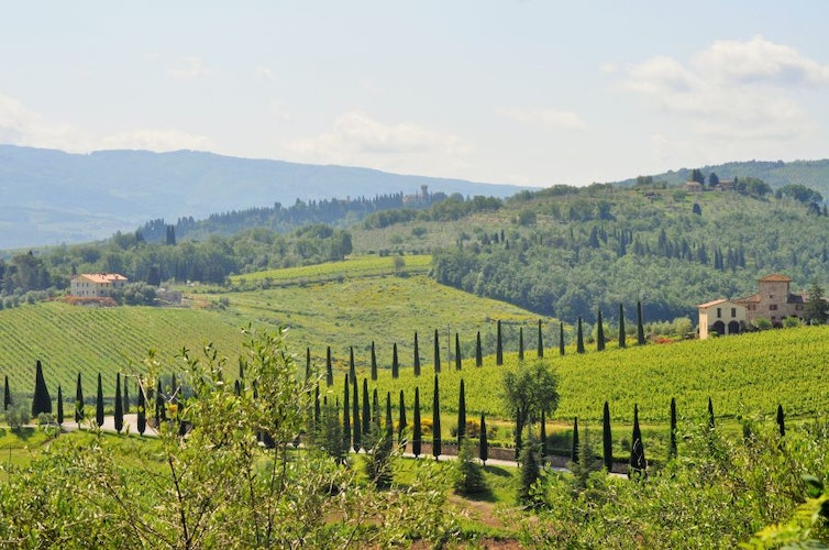 Stunning Tuscan views in every direction at Montrogoli