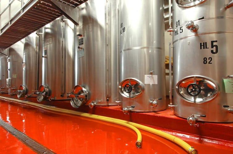 Nell'azienda dell'agriturismo si producono olio d'oliva e vino