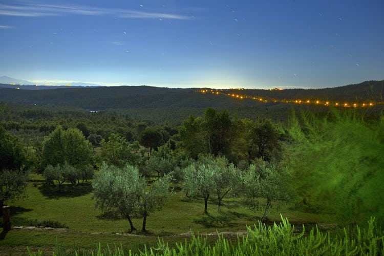 Agriturismo Podere Argena: Under the stars in Tuscany