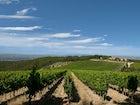 Chianti Farmhouse in the vineyards Romitorio di Se