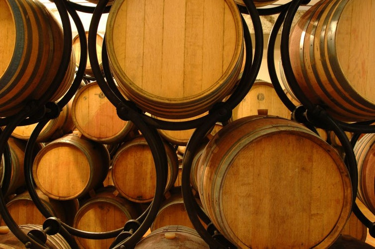 Chiedete di visitare le cantine e degustare vini ed olio dell'azienda
