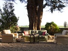 Spacious garden with many areas for relax at Villa Fillinelle