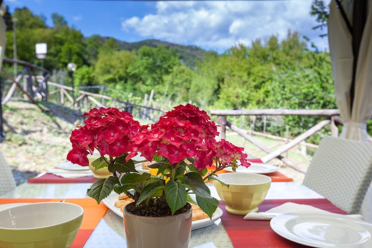 Ghiaia Holiday Villas & Homes: Your dream location for a Tuscan holiday near Lucca