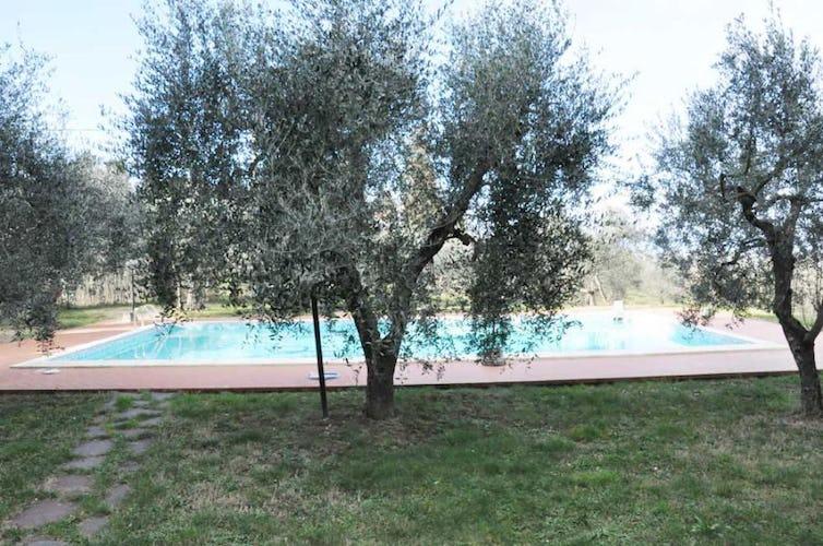 La piscina incastonata nel verde del giardino che circonda la villa