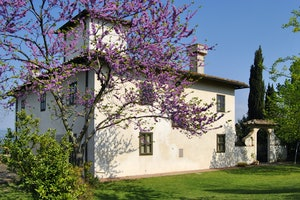 Villa La Medicea - Click for more details